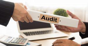 Image: IRD audit